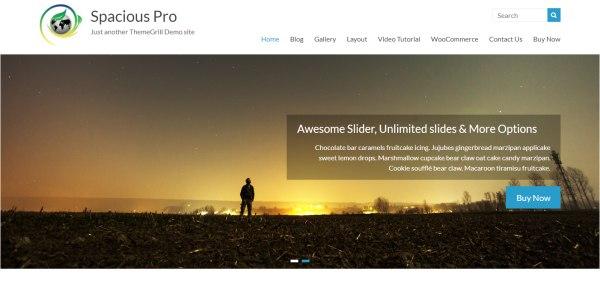 Las mejores plantillas de WordPress Premium: Spacious Theme Pro