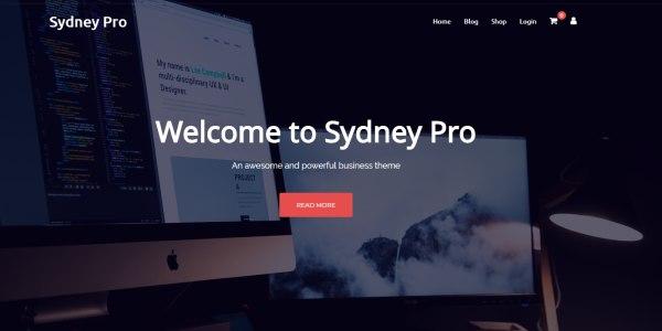 Las mejores plantillas de WordPress Premium: Sydney Theme Pro